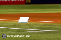 Tampa Bay Rays - 7/12/2015