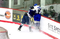 Boy's Hockey - 3/26/2016 - Division 1 Finals, Game 2